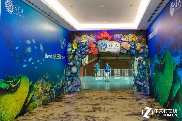 大C游世界 新加坡圣淘沙岛上的海洋馆
