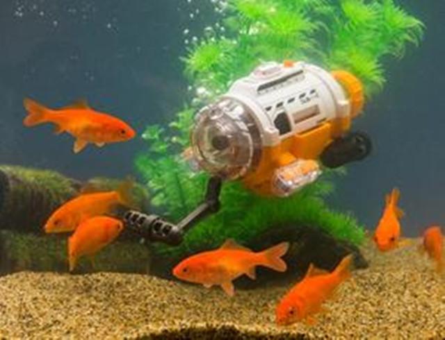 金鱼自拍时代到来 日本研制潜航摄像机