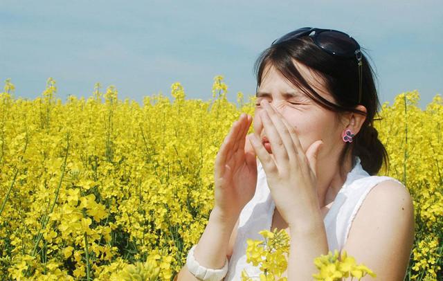 不能只看参数 夏季空气净化器如何选?
