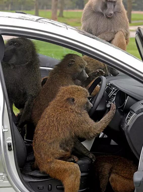 不解决这些问题 无人驾驶还是难上路
