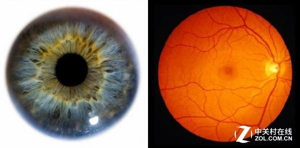 视网膜识别VS虹膜识别 谁更胜一筹