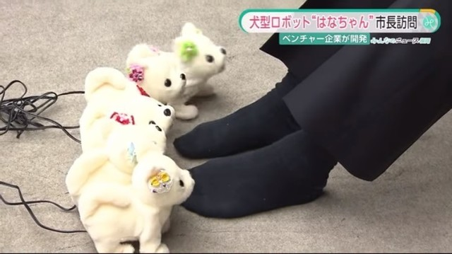 尴尬!日本发明机器狗专门闻谁的脚臭