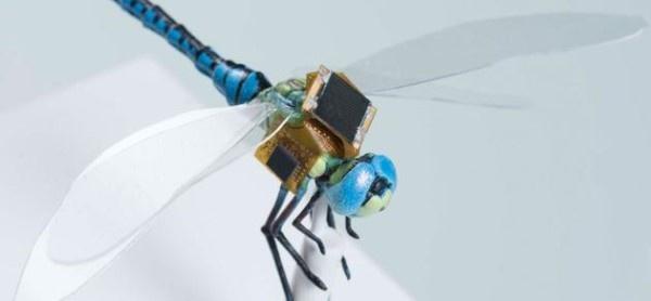 当蜻蜓遇到无人机:DragonflEye昆虫项目