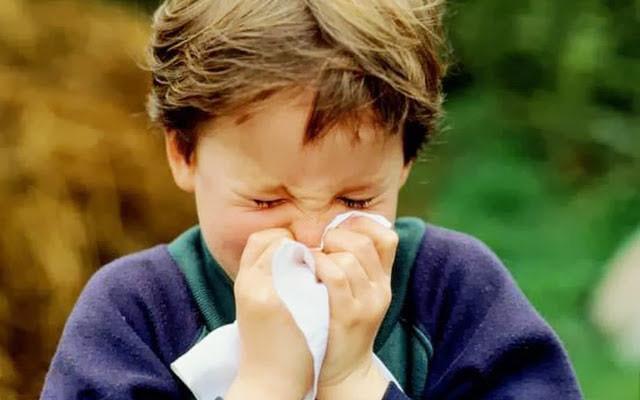 """清洁空气为新春 谁是优良""""气氛""""担当"""