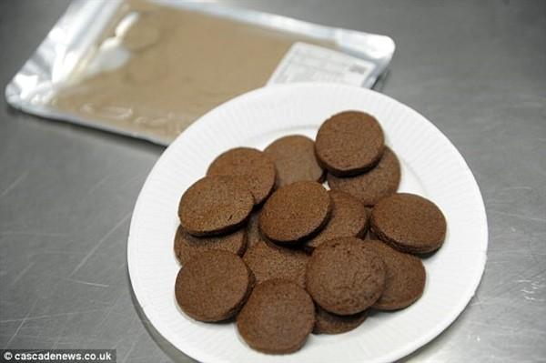 酸爽 科学家脑洞大开 蟋蟀磨成粉做饼干