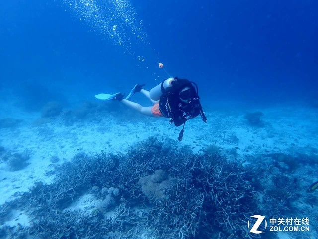 白富美潜水女神在深海玩转瑜伽和摄影