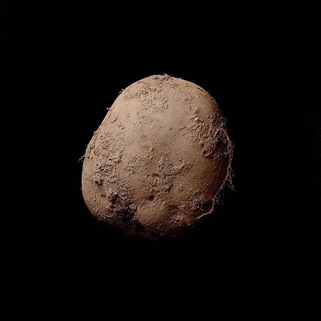 一张照片100万美元! 土豆照片卖天价