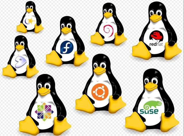 Linux内核年度开发报告 英特尔贡献最多