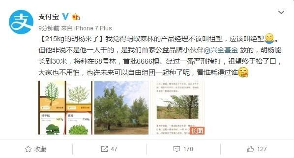 支持公益!支付宝蚂蚁森林新增胡杨树种