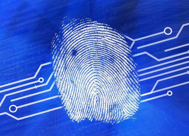 华为指纹识别传感器从此告别独家专供