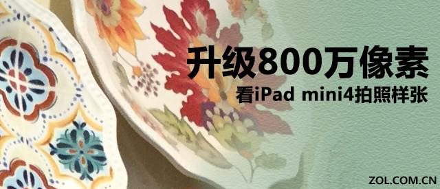 升级像素800万,看iPad mini4拍照样张