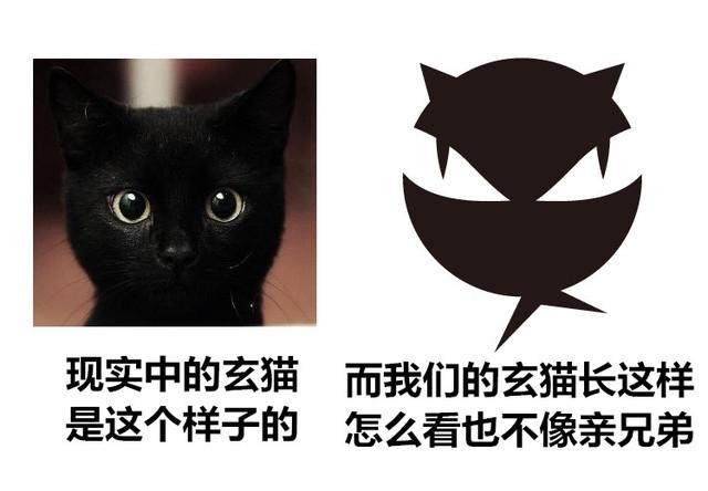 玄猫行车记录仪