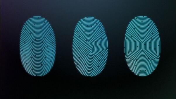 万能指纹并非安全 解锁成功率达65%