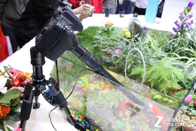P&E2017 国产老蛙镜头现场试用体验