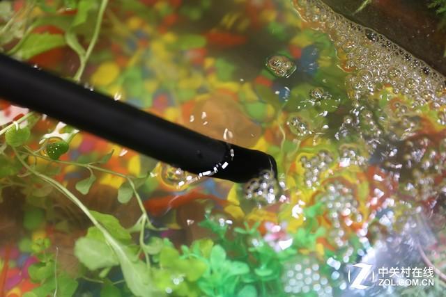 P&E2017 老蛙展示伸到水中的微距镜头