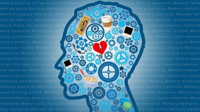 简直匪夷所思 人类的记忆可改写删除?