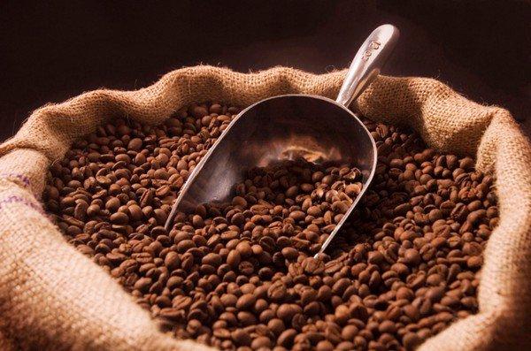 全球气候持续恶化!研究显示本世纪末咖啡豆或会完全灭绝