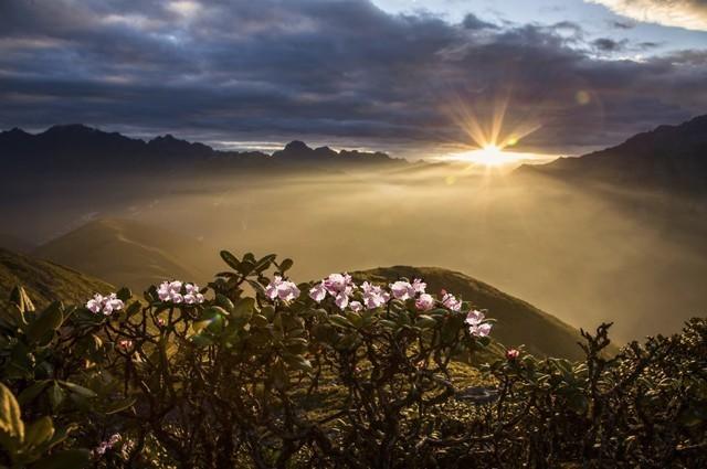 摄影人必看 关于阳光的魅力你知道吗?