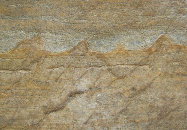 发现最老化石 地球可能 37 亿年前就有生命