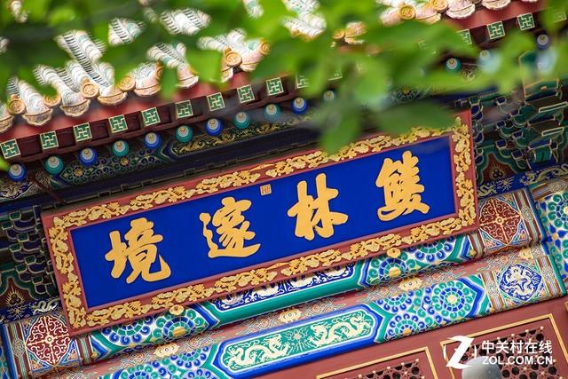 清凉夏日 佳能红圈套机头记录香山公园