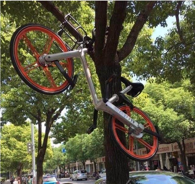 5毛的便宜你也占 破解单车你真的缺钱吗